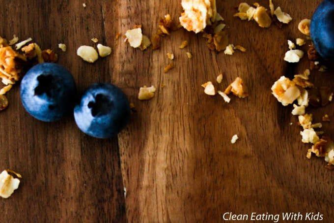 Granola yogurt berry-9