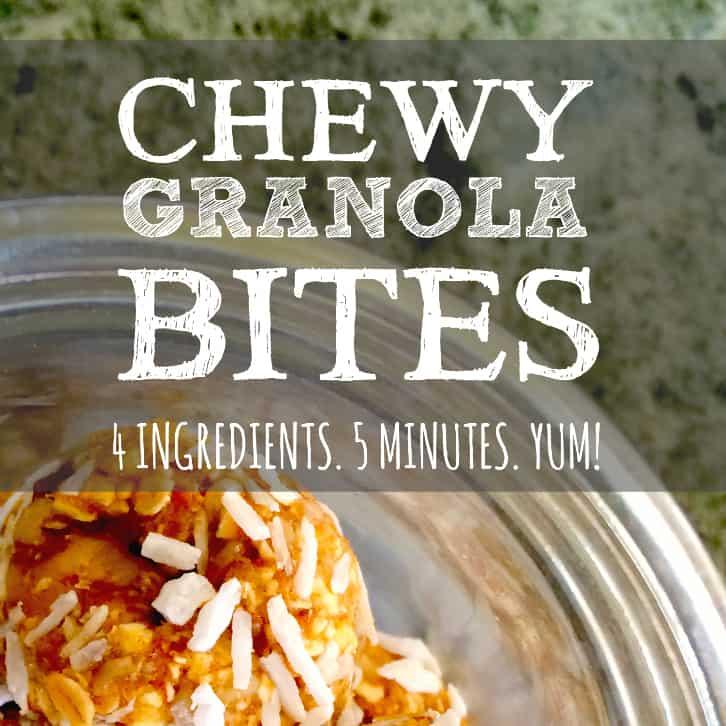 Chewy Granola Bites.