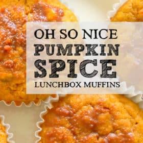 Oh So Nice Pumpkin Spice Muffins