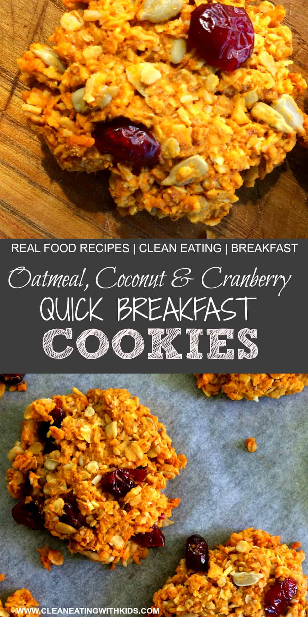 oatmeal coconut and cranberry breakfast cookies.