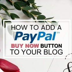 How to Add a PayPal BUY NOW Button to Your Blog