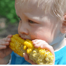 How to Get your Fussy Child to Eat their Veggies