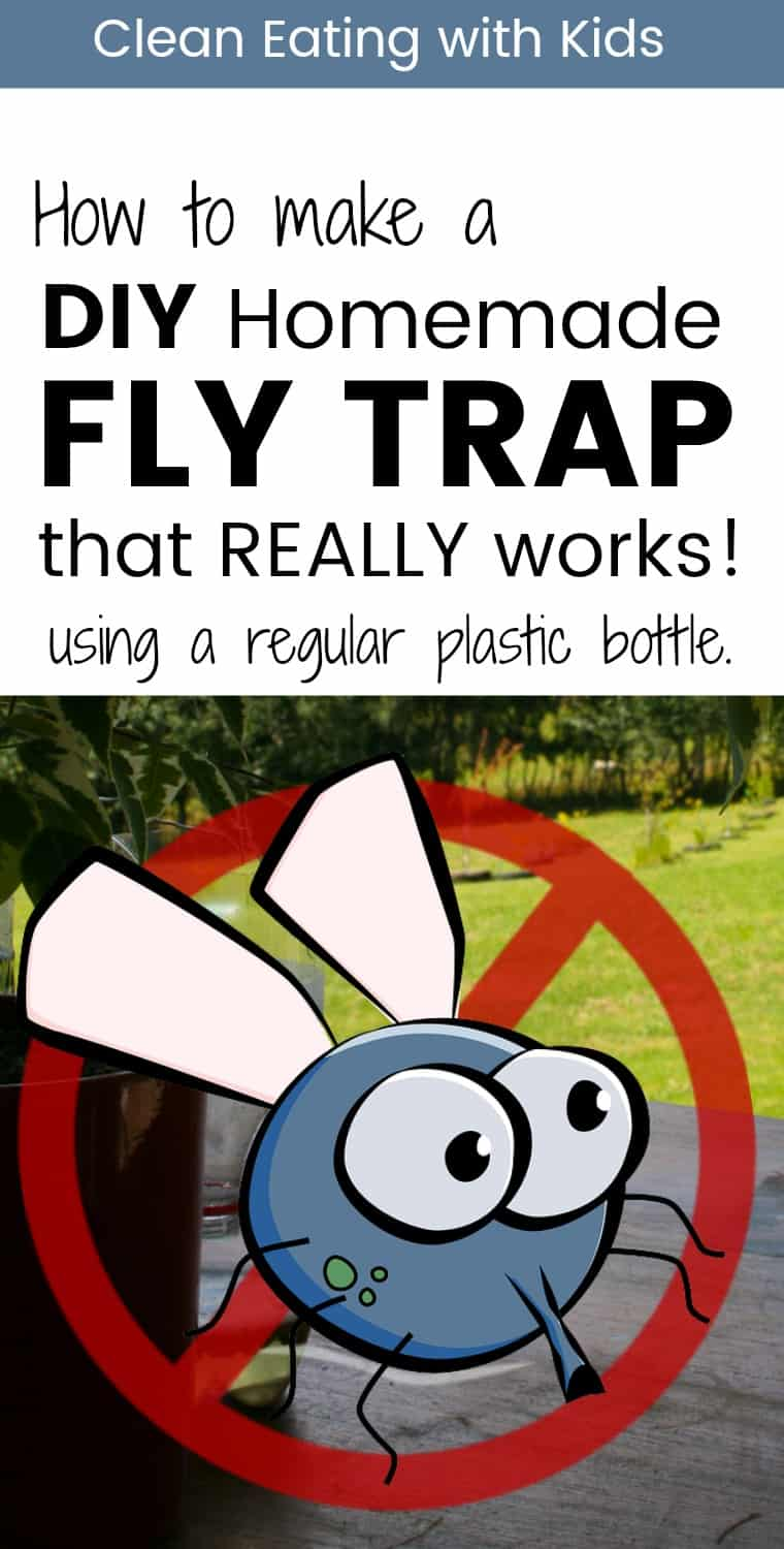 Flies driving you Crazy? Make this simple Homemade Fly Catcher in the next 5 minutes using a plastic bottle and a pair of scissors. You can have it set up and catching those pesky flies in a matter of minutes.