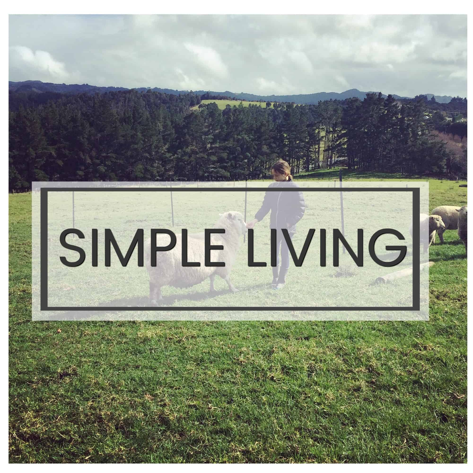Simple living homemaking clean eating with kids for Minimalist living with kids