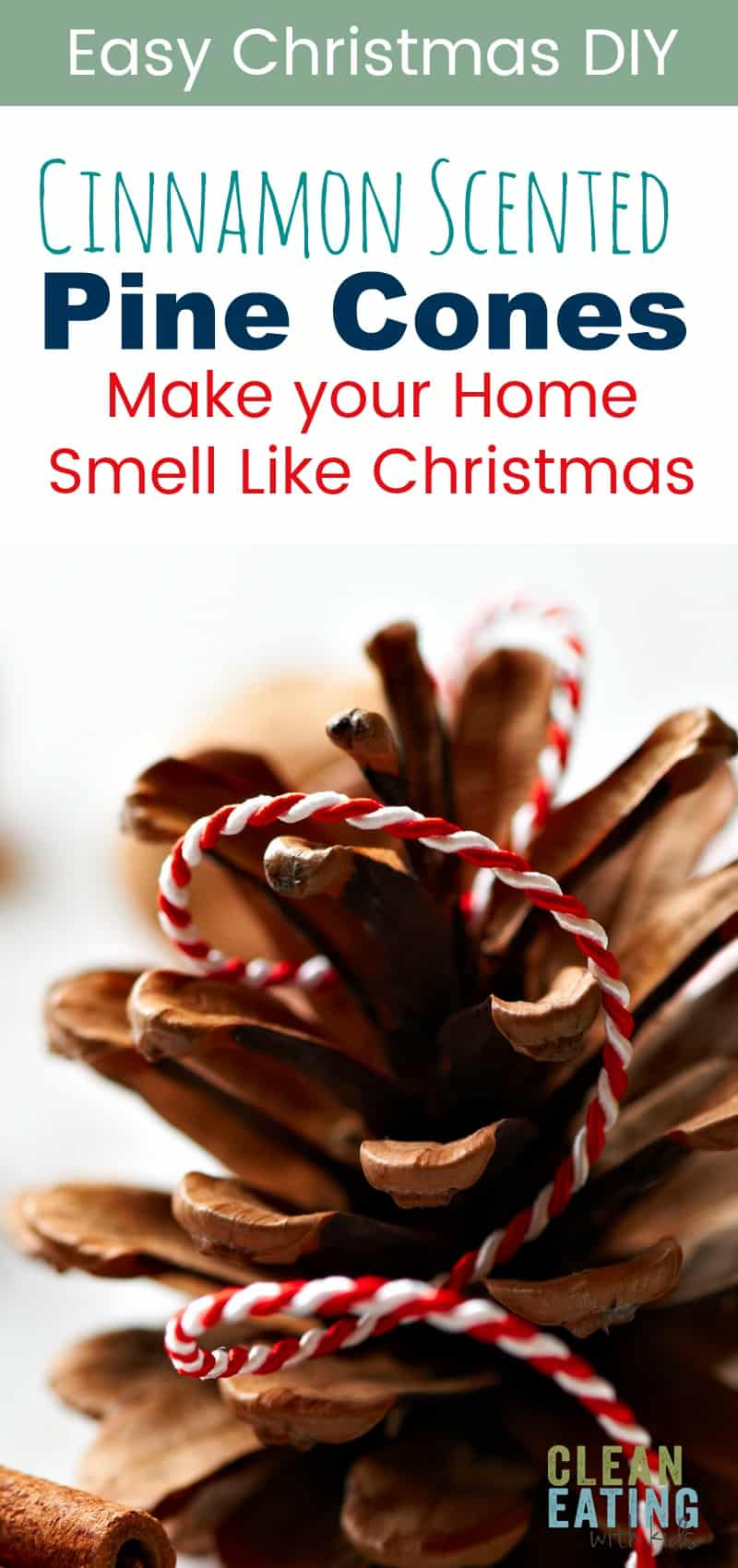 Easy Christmas DIY - cinnamon scented pine cones. These make awesome cheap Christmas gifts too!