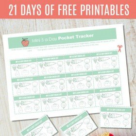 DAY 11: {FREE PRINTABLE} Mini 5-a-day Pocket Tracker