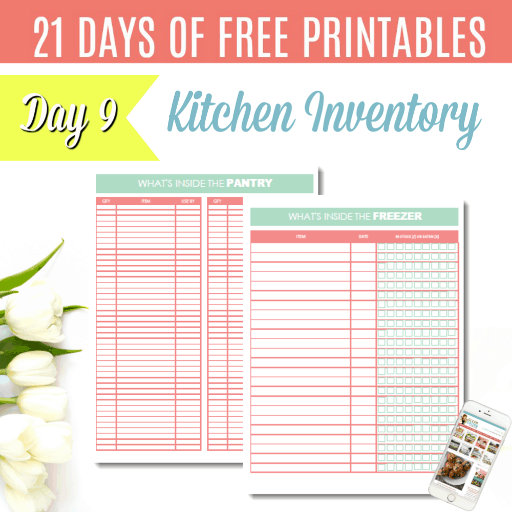 graphic about Pantry Inventory Printable titled Working day 9: Free of charge PRINTABLE Pantry and Freezer Stock - Contemporary