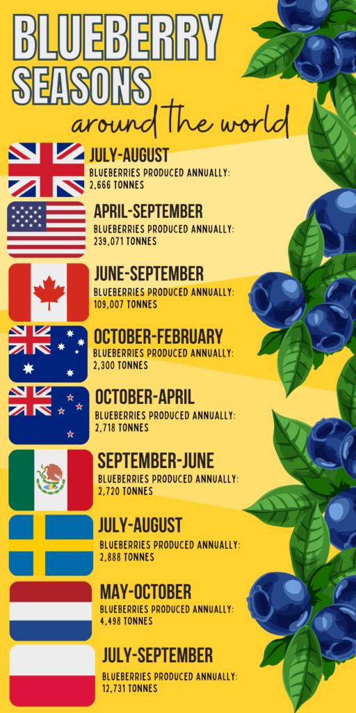 blue berry seasons infographic