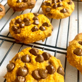 easy pumpkin spice chocolate chip cookies